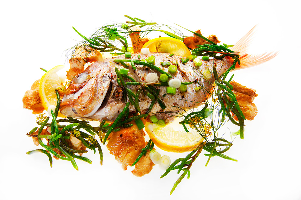 sea-bream-8